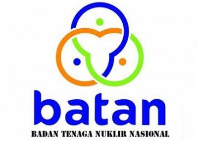 Badan Tenaga Nuklir Nasional (BATAN)