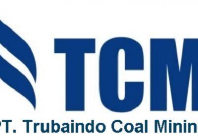 PT. Trubaindo Coal Mining